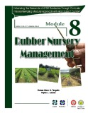 Module 8: Rubber nursery management