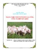 Thuyết minh dự án: Trang trại chăn nuôi heo gia công công nghiệp