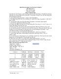 Đề thi Kinh tế lượng - ĐH Ngân hàng TP.HCM