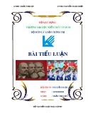 Tiểu luận Mác-Lênin: Sứ mệnh lịch sử của giai cấp công nhân và liên hệ với giai cấp công nhân Việt Nam