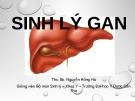 Bài giảng Sinh lý gan - ThS.BS. Nguyễn Hồng Hà (ĐH Y dược Cần Thơ)