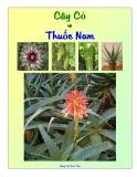 Cây cỏ và thuốc Nam - Công Trứ (Sưu tầm)