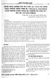 Bước đầu đánh giá mức độ an toàn vệ sinh thực phẩm trên tôm sú (Penaeus monodon) nuôi thâm canh theo hệ thống đa chu kỳ - đa ao tại Hải Phòng