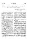 Ảnh hưởng của nước dừa và sucroza lên sự tăng sinh mô sẹo và sự hình thành phôi vô tính ở loài Lan Hồ Điệp [Phalaenopsis amabilis (L.) blume]