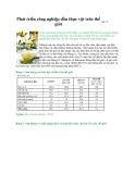 Phát triển công nghiệp dầu thực vật trên thế giới