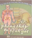 Ebook Bệnh phong thấp và bệnh gút: Phần 2 - He Jian - De Hong