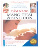 Sổ tay mang thai và sinh con: Phần 2