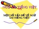 Bài giảng Ngữ âm tiếng Việt: Một số vấn đề về ngữ âm tiếng Việt