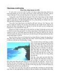 Năng lượng và môi trường khai thác năng lượng của biển