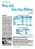 Thế giới dữ liệu: Thủy điện trên sông Mêkông