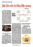 Độc đáo nấu ăn bằng điện quang