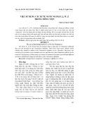Việc sử dụng các kí tự nước ngoài F, J, W, Z trong tiếng Việt