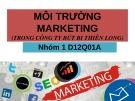 Bài thuyết trình: Môi trường Marketing (Trong Công ty Bút bi Thiên Long)