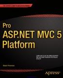 Ebook Pro ASP.NET MVC 5 Platform