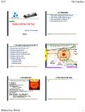 Bài giảng Năng lượng tái tạo: Chương 1 - ThS. Trần Công Binh