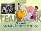 Bài giảng Chương 5: Cơ sở của hành vi nhóm