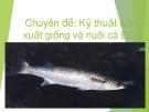 Chuyên đề: Kỹ thuật sản xuất giống và nuôi cá đối