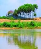 Tiềm năng và hướng phát triển du lịch sinh thái vườn quốc gia Cát Tiên - Nguyễn Văn Thuật