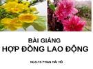 Bài giảng Hợp đồng lao động - NCS.TS. Phan Hải Hồ
