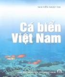 Nghiên cứu Cá biển Việt Nam: Phần 1