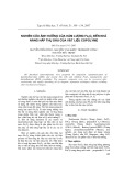 Nghiên cứu ảnh hưởng của hàm lượng Fe2SO4 đến khả năng hấp thụ dầu của vật liệu Copolyme