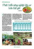 Phát triển nông nghiệp hữu cơ trên thế giới