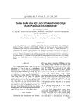 Thành phần hóa học lá cây thanh phong chụm (Sabia fasciculata, Sabiaceae)