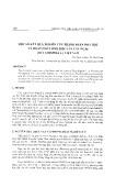 Một số kết quả nghiên cứu thành phần hóa học và hoạt chất sinh học của cây Ngái (Ficus HispidaL.) Việt Nam