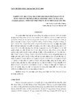 Nghiên cứu khả năng thay thế một phần phân đạm vô cơ bằng một số chế phẩm (phân) sinh học cho cây dưa leo trên đất thịt nhẹ vụ xuân 2009 tại Quảng Trị