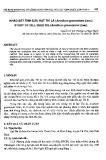 Khảo sát tinh dầu hạt Thì là (Anethum graveolens Linn.)