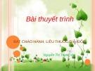Bài thuyết trình: Bát cháo hành, liều thuốc giải độc - Nguyễn Thị Thanh Mai
