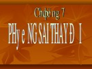 Bài giảng Kinh tế lượng: Chương 7 - Lê Thị Hồng Hoa