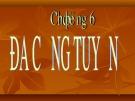 Bài giảng Kinh tế lượng: Chương 6 - Lê Thị Hồng Hoa