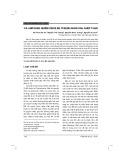 Ca lâm sàng nhiễm virus BK ở bệnh nhân sau ghép thận