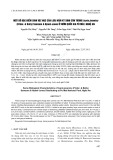 Một số đặc điểm sinh vật học của loài nấm ký sinh côn trùng isaria javanica (Frider. & Bally) Samsom & Hywel-Jones ở Vườn quốc gia Pù Mát, Nghệ An