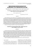 Đánh giá khả năng thích ứng và khả năng kết hợp của dòng ngô MO17 và B73 trong điều kiện Gia Lâm, Hà Nội