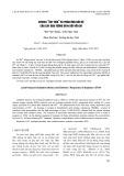 """Stress """"Ôxy hóa"""" và phản ứng bảo vệ của cây đậu tương DT84 đối với chì"""
