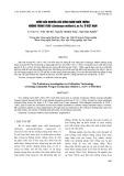 Bước đầu nghiên cứu công nghệ nuôi trồng nhộng trùng thảo (Cordyceps Militaris L.Ex Fr.) ở Việt Nam