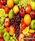 Những vitamin khi tập thể hình mà bạn nên quan tâm