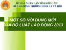 Bài giảng Một số nội dung mới của bộ Luật Lao động 2013