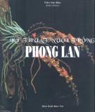 Ebook Kỹ thuật nuôi trồng phong lan: Phần 1 - Trần Văn Bảo (biên soạn)