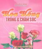 Ebook Hoa hồng - Trồng và chăm sóc: Phần 1 - Võ Văn Hòe
