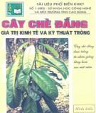 Ebook Cây chè đắng - Giá trị kinh tế và kỹ thuật trồng: Phần 2