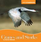 Ebook Animals: Cranes and Stork