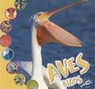 Ebook Aves birds