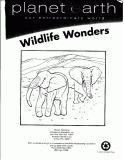 Ebook Planet Earth our extraordinary word Wildlife wonders