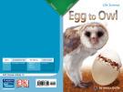Ebook Egg to owl