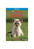 Ebook A kitten grows