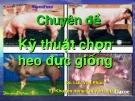 Bài giảng Chuyên đề: Kỹ thuật chọn heo đực giống - KS. Lưu Văn Phúc