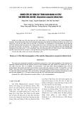 Nghiên cứu xây dựng quy trình nhân nhanh in vitro sáu dòng hoa lan huệ - Hispeastrum esquestre (Aition) Herb